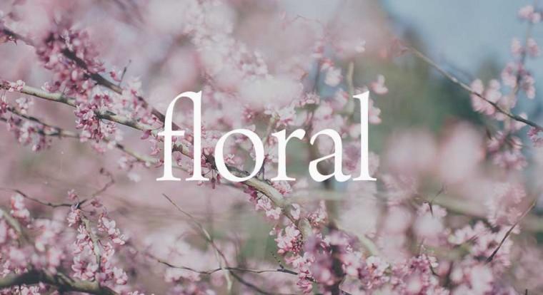 http://over150fragrances.com/wp-content/uploads/2016/06/floral-760x414.jpg
